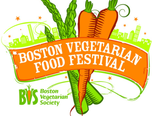 Update: Reflections on Boston Veg Fest & Our Need for Help to Pay Our Vet Bills